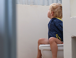 Toddler - Toilet training - easy