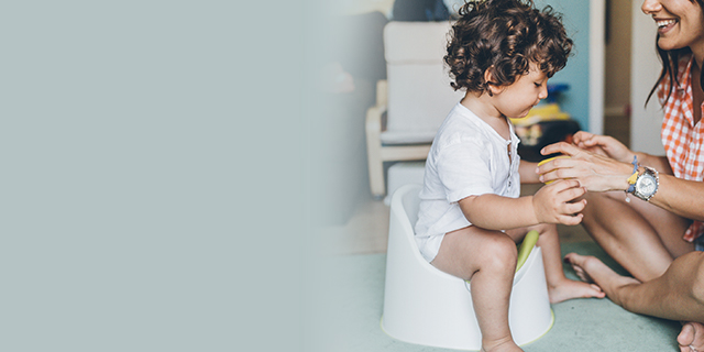 toddler - development - toilet training
